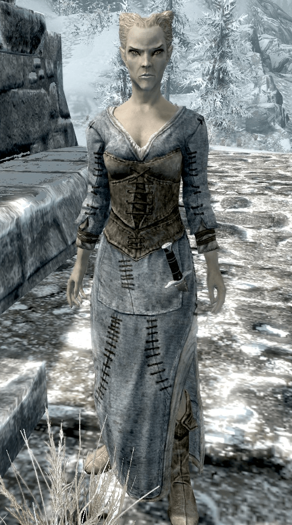 Windhelm_Arivanya